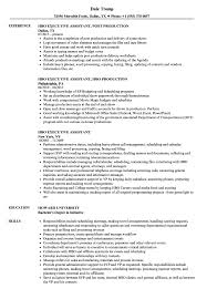 HBO Executive Assistant Resume Samples | Velvet Jobs Virtual Assistant Resume Sample Most Useful Best 25 Free Administrative Assistant Template Executive To Ceo Awesome Leading Professional Store Cover Unforgettable Examples Busradio Samples New And Templates Visualcv 10 Administrative Resume 2015 1