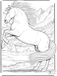 Realistic Horse Coloring Pages Page Jumping