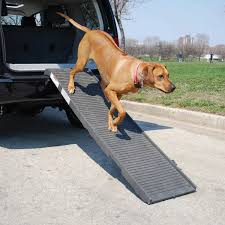 100 Dog Truck Ramp PetSTEP Folding Pet Graphite Chewycom