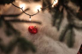 Fred Meyer Artificial Christmas Trees by Amassing Cents Tips For Affordable Sensible And Fun Living