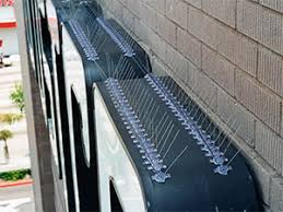 bird spikes efficient and cost effective exclusion devices for