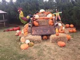 Maxwells Pumpkin Patch Amarillo Texas by At U0027l Do Farms Texas Haunted Houses