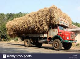 Truck Load Of Hay Stock Photos & Truck Load Of Hay Stock Images - Alamy Hay Truck Stock Photos Images Alamy My 63 Chevy Hauling Hay Trucks Hay Hauler Loading Time Lapse Youtube Gmc Diesel Dairyland Co 24 Truck And Trailer In Flickr Australian Trucking On Twitter The Volvotrucks Ata Safety 5jp Ranch Life Page 6 Delivering To Market At Tenerir The Atlas Mountains Pinterest Overloaded In West Coast Of Turkey Image Farm With Family Help Men Riding Full