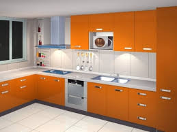 Beauty Functionality Small Indian Kitchen Design