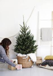 Types Of Christmas Trees To Plant by Best 25 Small Christmas Trees Ideas On Pinterest Mini Christmas