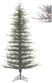 Silvertip Fir Christmas Tree by Silver Tip Christmas Tree Fishwolfeboro
