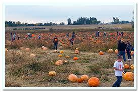 Mccalls Pumpkin Patch Employment by Linder Farms U2013