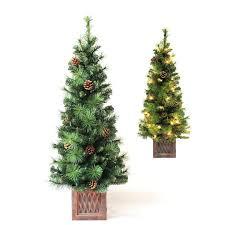 Tabletop Christmas Tree Prelit Lit Awesome Fresh Holiday White Live