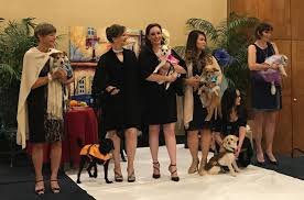 HOPE Runway Show Goes To The Dogs – Daily Bulletin Lori Tony Engaged Rancho Los Alamitos Justinelement Kimco Foothill Retail Cridor Claremont Wedding Venues Reviews For New York Locations Country Club Receptions Real Guerrilla Style In La Little Revel The Karen Ramirez Your Realtor Glendora Homes Sale San Dimas 22 Best Assistit Images On Pinterest Bride Drses Marriage And Best 25 Hippie Weddings Ideas Hippy Wedding Juan Stephanie A Rustic Hurst Ranch Lindy Bop Ophelia Vintage 1950s Floral Beige Spring Garden