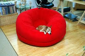 Bean Bag Chairs Dog Beds Thesecretconsulcom
