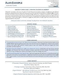 Professional Resume Example Consultant