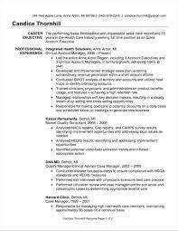 Rhbrackettvilleinfo Sales Key Account Manager Resume Examples E Job Description Template Sample Advertising S