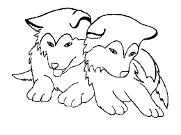 Coloring Pages Spectacular Husky Siberian