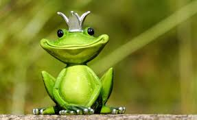 100 King Of The Frogs Selective Focus Of Green King Frog Figurine HD Wallpaper Wallpaper