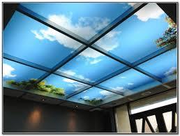 decorative drop ceiling tiles 2x4 iron blog