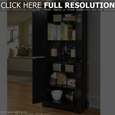 Broom Cabinets Home Depot by Broom Closet Cabinet Best Cabinet Decoration