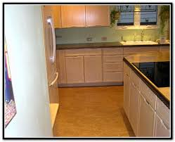 Quaker Maid Kitchen Cabinets Leesport Pa by Quaker Maid Cabinets Reading Pa Scandlecandle Com