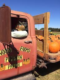 Rileys Pumpkin Patch Pittsburgh by Wood Farms Pumpkin Patch Home Facebook