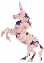 GIF Horse Happy Tumblr