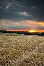 Farm Harvest IPhone Wallpaper