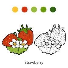Download Coloring Book Fruits And Vegetables Strawberry Stock Vector
