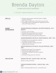 Professional Summary Resume Sample Sample Good Summary For Resume ...