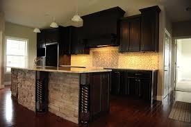 Dark Dramatic Contemporary Kitchen