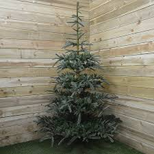 7ft Artificial Christmas Tree by Nobilis Fir Christmas Tree 7ft Fizzco Amazon Co Uk Kitchen U0026 Home