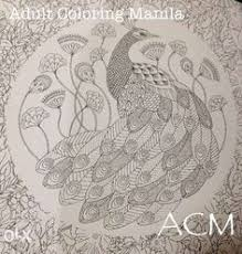 View Animal Kingdom Adult Coloring Book 96 High Quality Pages Secret Garden For Sale In Manila