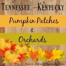Janoskis Pumpkin Patch by 100 Flowers Clarksville Tn 612 Flower Dr Clarksville Tn