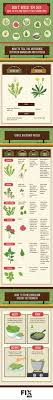 Best 25+ Edible Plants Ideas On Pinterest | Edible Wild Plants ... Southern Forager Spring Edible Plants In Middle Tennessee Eating The Wild Your Backyard Fixcom Landscapes Think Blue Marin Gulf Coast Gardening For Weeds And You Can Eat Remodelaholic 25 Garden Ideas Backyards Amazing Uk Links We Love Planting Plant Landscaping Sacramento Landscape Blueberries Raspberriesplants For Your Summer Guide Oakland Berkeley Bay Area Paper Mill Playhouse Yard2kitchen 197 Best Edible Wild Plants Images On Pinterest Survival Skills