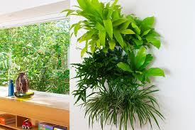 Living Wall Planter Indoor Outdoor Hanging Planter