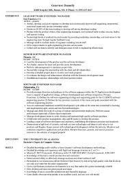 Download Software Engineer Manager Resume Sample As Image File