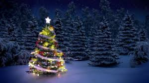 Tannenbaum Christmas Tree Farm Michigan by 11 Facts You Might Not Know About Christmas Trees Mental Floss