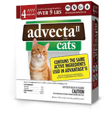 flea treatment for cats top 10 best flea for cats reviewed