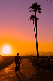 Beautiful Summer Landscape Water Happiness Inspirational Los Angeles Cali California Beach Sand Ocean Palm Trees Sunset