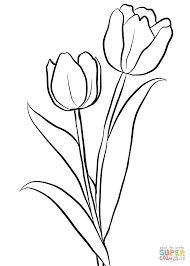 Click The Two Tulips Coloring Pages To View Printable Version Or Color It Online Compatible With IPad And Android Tablets