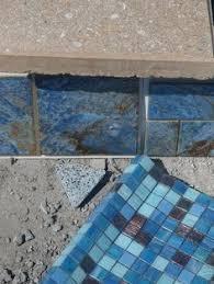 Npt Pool Tile Palm Desert by Custom Pool Tile Random Beauty Pinterest Swimming Pools
