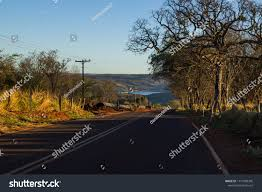 100 Pau Brazil Ian Cerrado Dawn Road Furado Stock Photo Edit Now