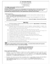 Unique Resume Titles Good Catchy Title Examples
