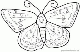 Free Printable Animals Butterfly Coloring Pages For First Grade