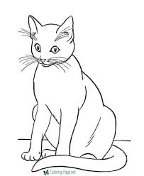 Cats Armed Forces Coloring Pages
