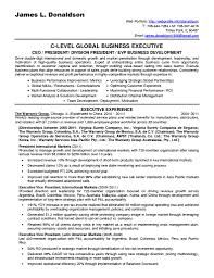 Sample Resume Business Development Manager Insurance Valid Others Executive Summary Analyst With It Project