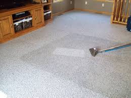 residential commercial steam carpet cleaning