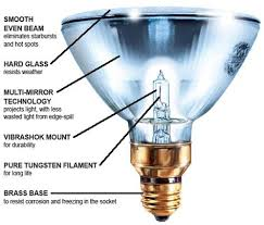 halogen ls can range in cost from about 5 to 30 the annual