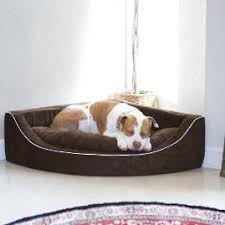 Tempur Pedic Dog Beds by Cool Gel Memory Foam Pet Bed Frontgate