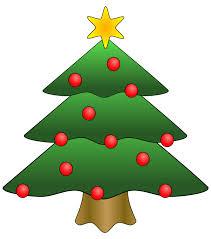 Christmas Tree Saplings Ireland by Best Trees To Grow In Ireland Hedging Ie