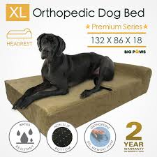 Extra Large Orthopedic Dog Bed by Memory Foam Dog Bed Extra Large Orthopedic Dog Beds Cushion