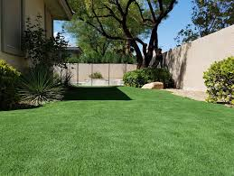 Backyard Putting Green Designs Large Conservatory Decorating Ideas ... Playful Dog Running Away From Ball White Labradoodle Putting Greens Golf Just Like Grass Tour Backyard Green Cost Synlawn Itallations Reviews Testimonials Our Diy Kids Theater Emily A Clark Unique Architecturenice Little Bit Funky How To Make A Backyard Putting Green Wood Fence On Colorful House Stock Vector 606411272 Concrete Ideas Hgtvs Decorating Design Blog Hgtv Puttinggreenscom One Story Siding With Lawn View From The