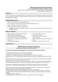 Resume BM Examples Ideas Banking Profile
